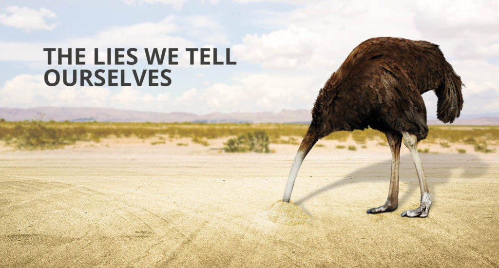Lies we tell ourselves, accountability, 2020 in a nutshell - Ostrich sticking head in ground