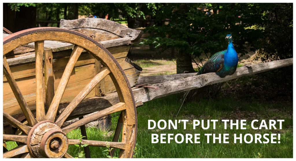 Don't put the cart before the horse! Peacock facing the front of an old wooden cart