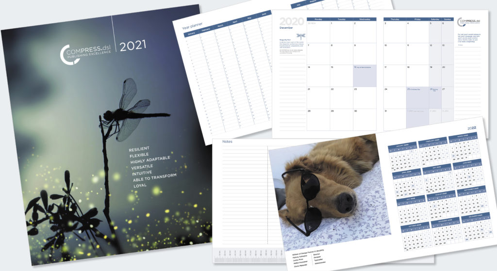 Compress 2021 Diary_visuals of different pages