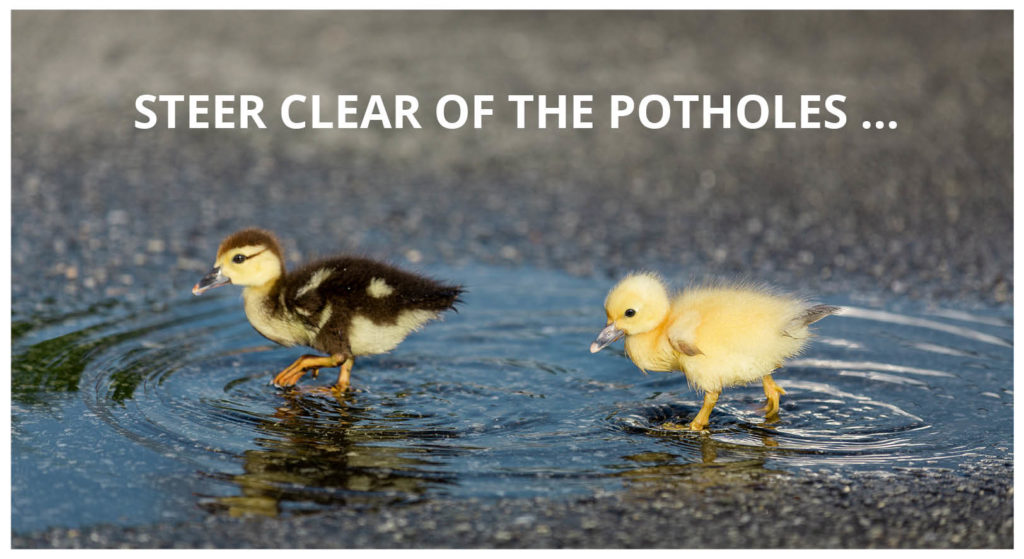 COMPRESS.dsl: Steer clear of the potholes 2 ducks upside down in sync …on the road to publication